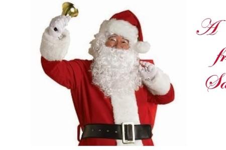 Santa Clause Costume